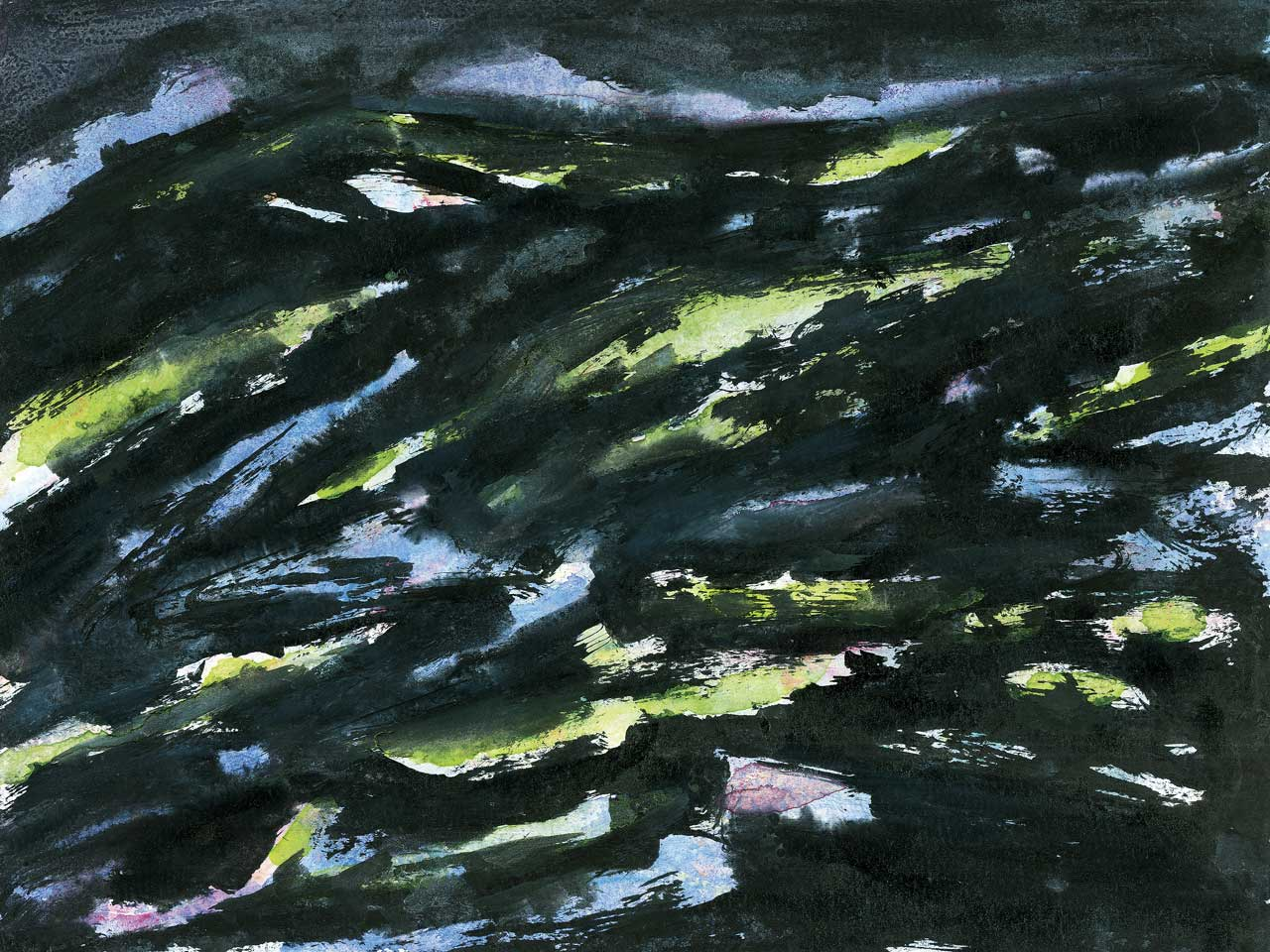 Norbert Klora, The Thar Desert 05